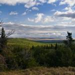 Montana Foothills