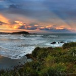 Cape Foulwind & Tauranga Bay