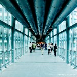 The Skybridge