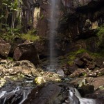 Protestor Falls in Nightcap National Park