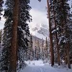 Bryant Creek Trail