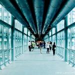 The Skybridge